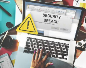 business identity theft and data breaches guide to plan prevent protect